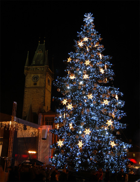 Christmas tree in Prague Old Town Square
