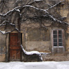 Combination of tree and building in Prague Strahov Monastery courtyard